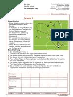 variante 1.pdf