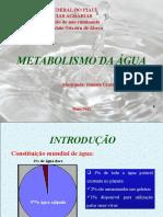Metabolismo Da Água