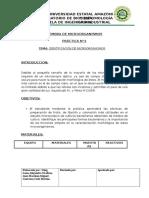 Formato de Practicas Identificacion de Microrganismos 2015-2016 Jjhh