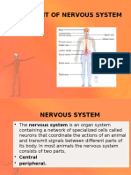 Assessment of Nervous System