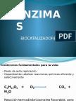 ENZIMAS-I