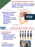 Habitos Que Dañan el Cerebro y tu Salud