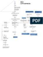 Maaping Leptospira