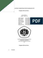 54136586-Laporan-Akhir-Praktikum-Farmakologi-Anti-Diare.docx