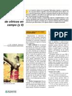 El injerto de Citricos.pdf