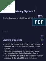 Bu Nurfitri-Genitourinary System 1