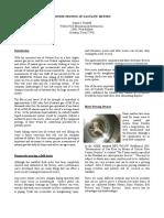 Online Proving System Fr Gasmeter