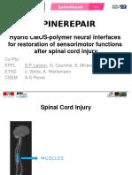Spine Repair