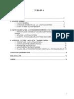 Lucrare - Audit Intern