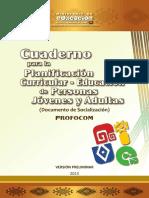 epja_planificacion.pdf