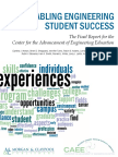 CAEE final report 20101102.pdf