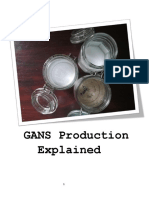 GANS Production Explained