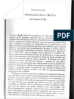 Susana Cella - La Irrupción de La Crítica - Introducción