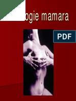 03 Patologia Mamara Red