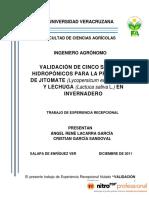 angelrenelacarragarcia.pdf