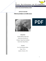 Protocolo de Investigación Maltrato Psicologico en El Adulto Mayor