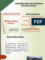 La Lixiviacións1