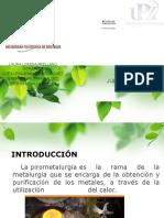 purificación (1)