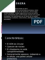 reinomonera-121211081828-phpapp02