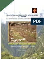 Estudio de mercado de M. Gamarra.pdf