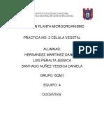Practica No.2 PLANTITAS