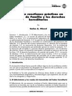 Algunas cuestiones prácticas en Derecho de Flia-Ghersi.pdf