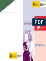 006-evaluacic3b3n-de-riesgos-peluquerc3adas.pdf