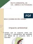 Presentacion Eia (1)