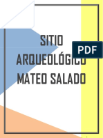 Mateo Salado FIN22AL