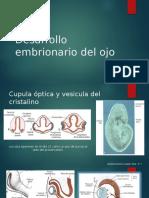 Desarrollo Embrionario Del Ojo