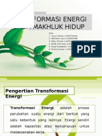 Transformasi Energi Pada Makhluk Hidup