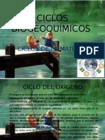 ciclosbiogeoqumicosiii-120925015335-phpapp01