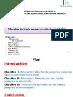 Allocation Des Fonds Propres Et Ratio de Rentabilité Final
