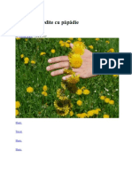 Beneficii Flori de Papadie