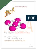Shasva OriGInal - Copy