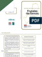 script-tmp-inta-manejo-frutales-carozo-misiones.pdf