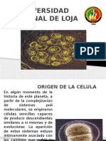 Exposicion Origen de La Celula