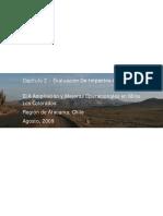 2d5_EIA_AyM_LC_-_Capitulo_02_-_Descripcion_de_Proyecto.pdf