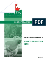 pullets and laying hens code of practice 2017
