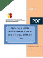 Estrategia CONE 2013