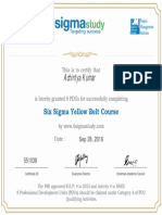 Six Sigma Yellow Belt 2016-09-28-12-27-33