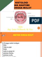 Kuliah Histologi Anatomi Gigi