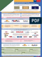 01 Bases de La Institucionalidad Politica Version Web