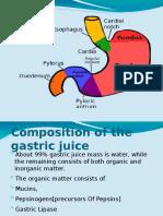Gastric Juice - 1