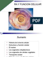 2.2.Estructura y Función Celular PRISCILA