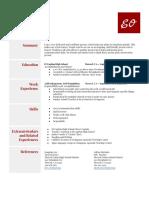 resumetemplate2015  5