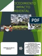 El Procedimiento de Impacto Ambiental