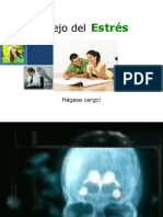 Manejo Del Estrés Vista Previa1