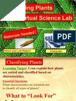 New Virutal Lab Vascular and Nonvascular Plants (1)