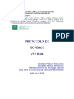 protocolo cuidados de sonda vesical.docx